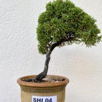 SHI 04