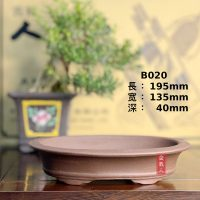 (8 ) 椭圆小浅盆 B020